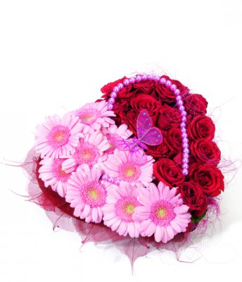 Angele - HP Optimized